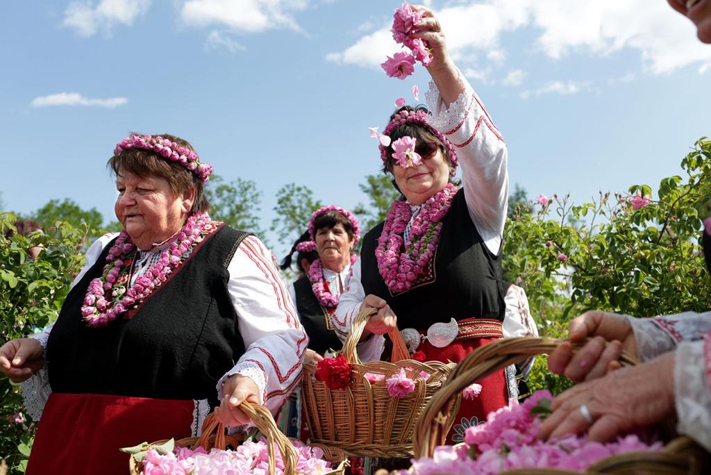 Thung lũng hoa hồng thơ mộng ở đất nước xinh đẹp Bulgaria