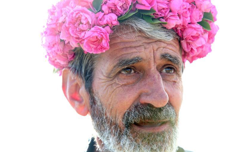 Nông dân trồng hoa Bulgaria
